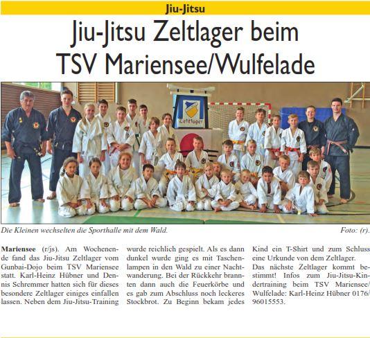 Jiu-Jitsu 2016